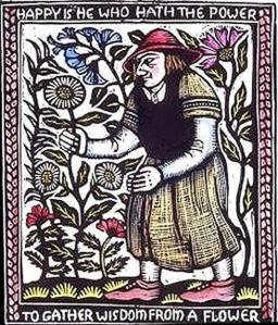 cunningflower