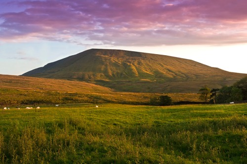 1 pendle_sunset