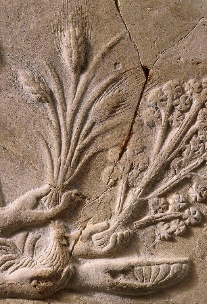 5th-century-b-c---italy--reggio-di-calabria--museo-nazionale-della-magna-grecia--archaeological-muse-96502745-5a591c92da27150037f157ce copy